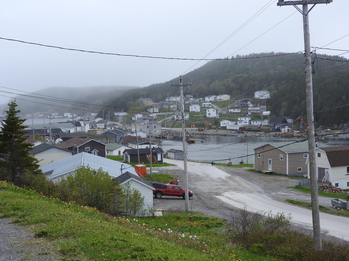 Englee Nl Tourist Information Bob S Newfoundland