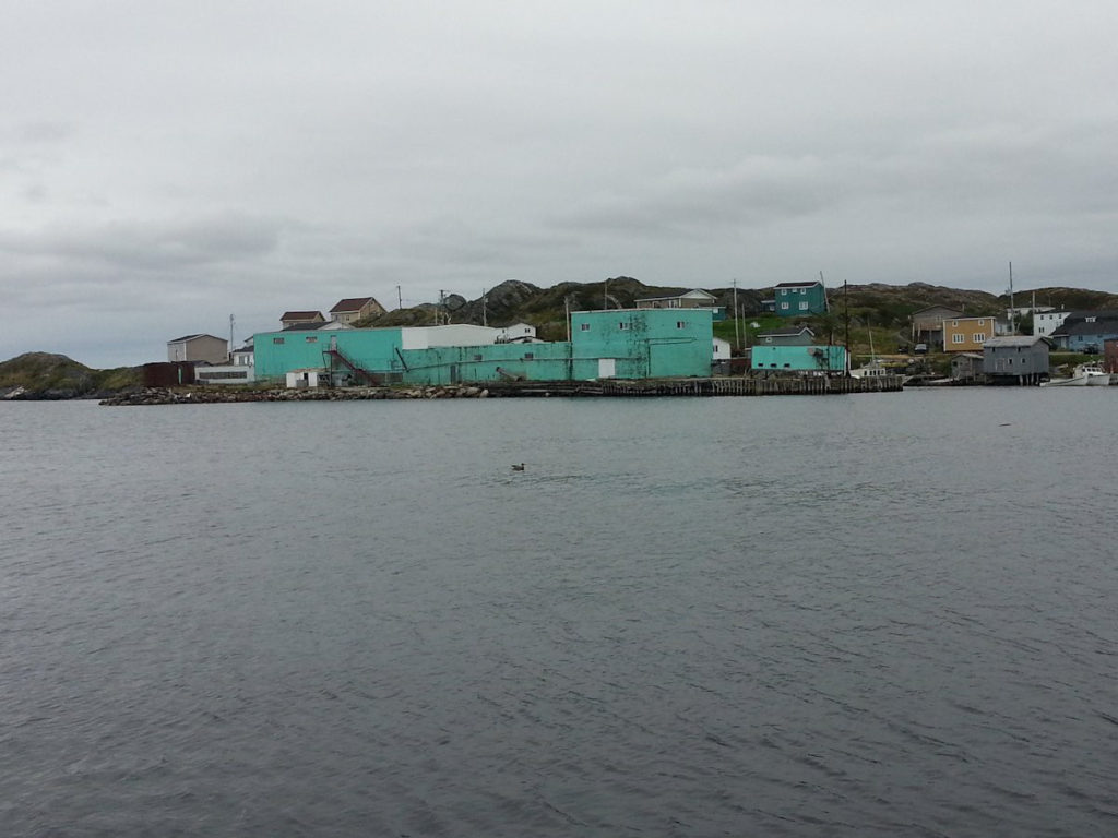 Burnt Islands Granite Coast Bob S Newfoundland